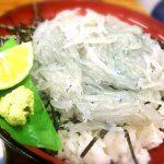 山武水産の生しらす丼