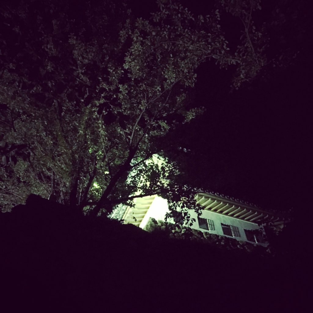 夜の洲本城