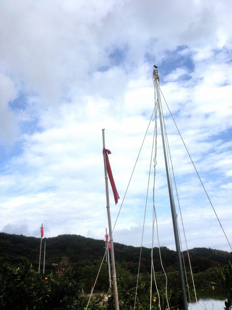 平岡農園のみかんの木の旗