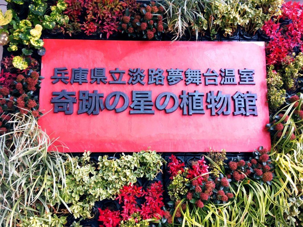 淡路夢舞台温室奇跡の星の植物館