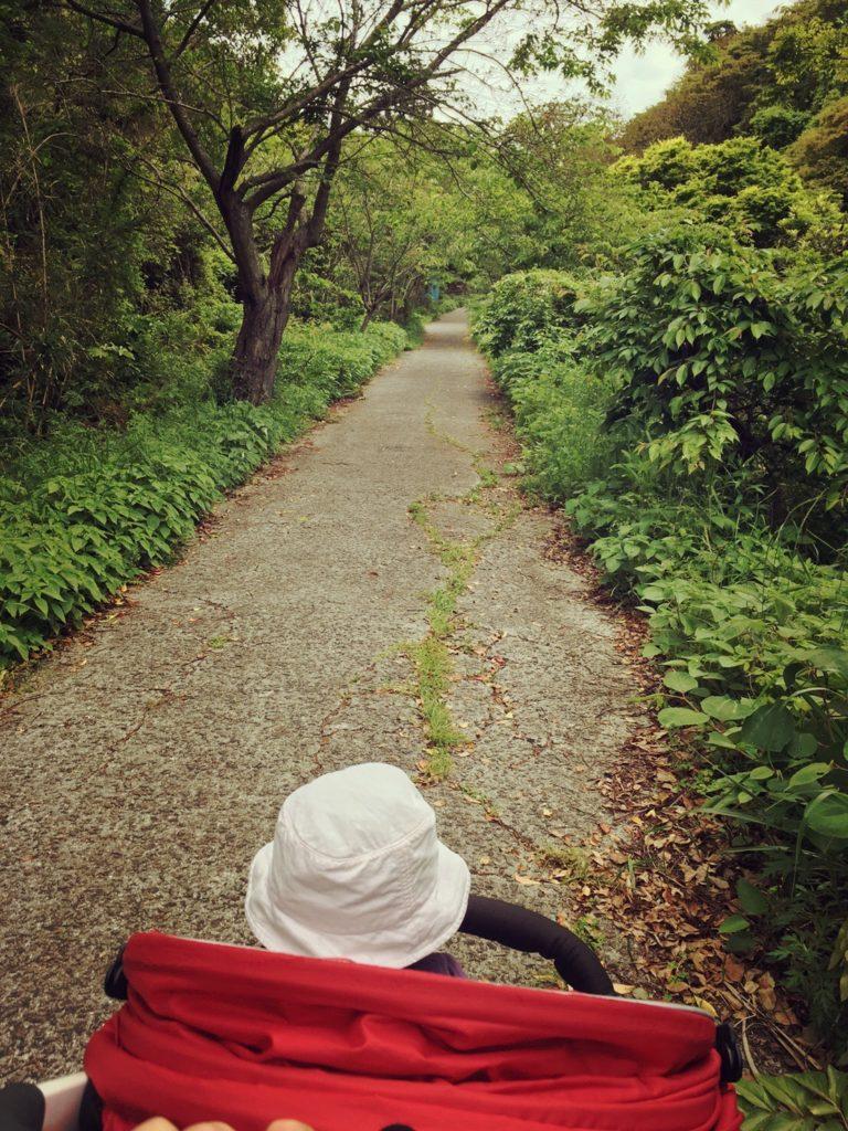 上立神岩への坂道