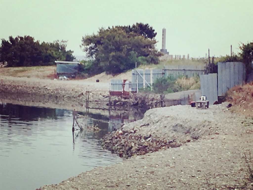 安戸池の奥水門を受付側を見た景色