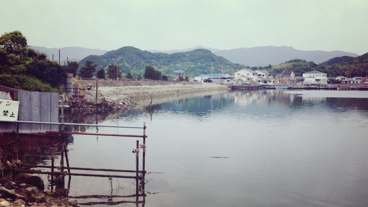 安戸池の奥水門から受付側を見た景色