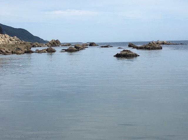 小磯と凪な海面
