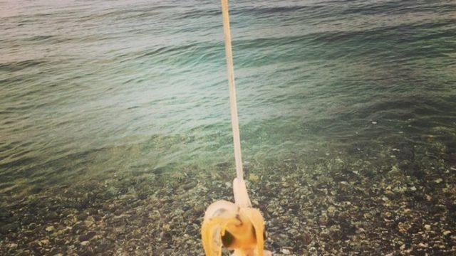サーフで釣れたアオリイカ17cmとエギーノぴょんぴょん(2017.9)
