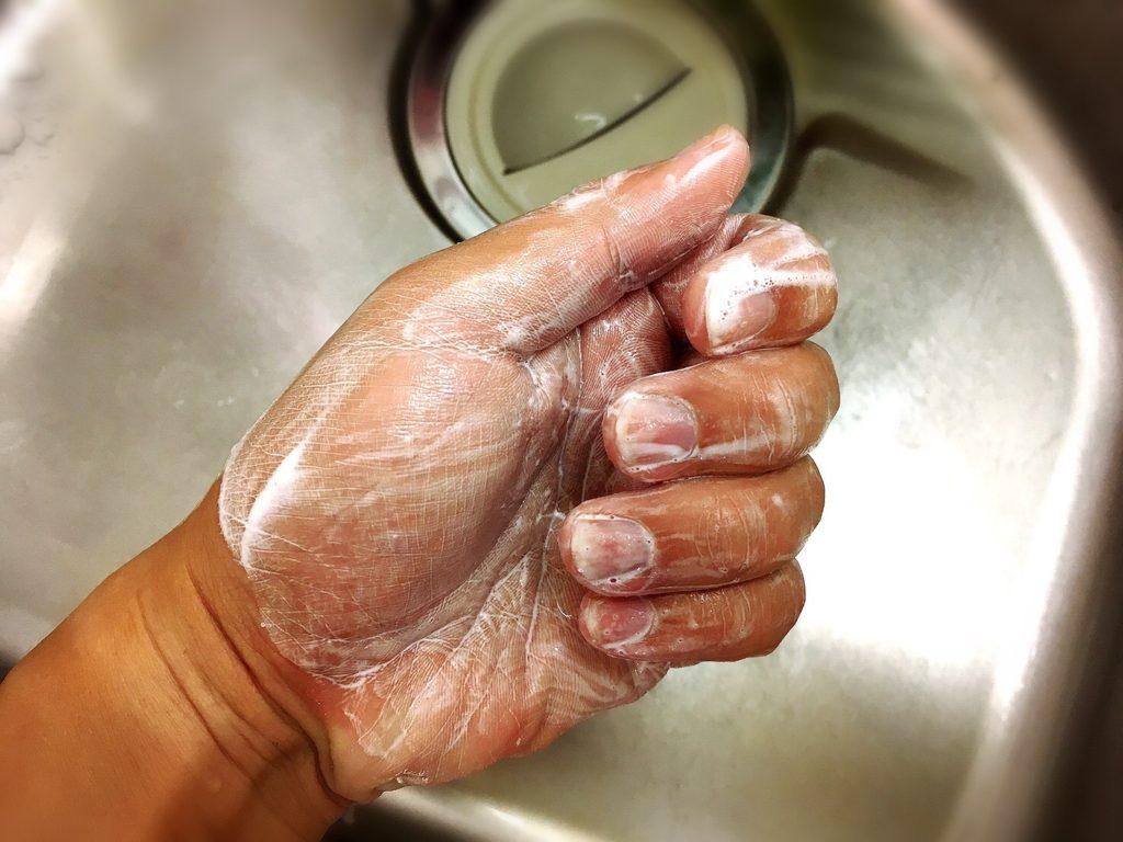 フィッシュソープで洗った手