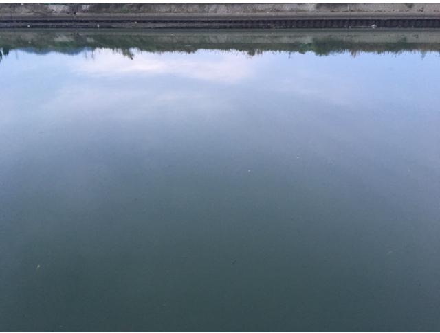 シーバス7日目、不発の水面のような河川(2017.11)