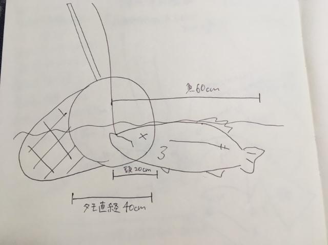 シーバスとタモ入れの図