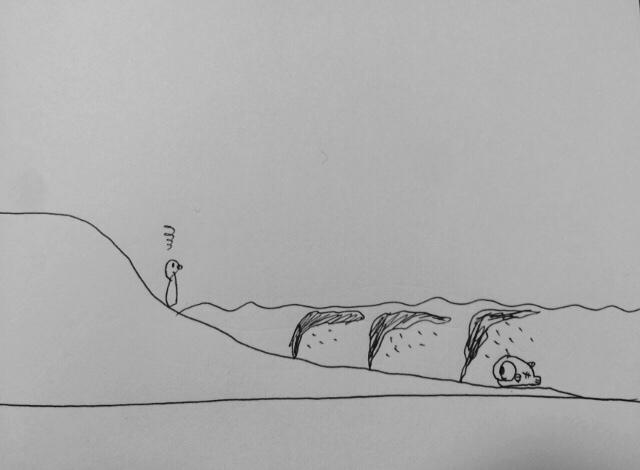 アフターメバルの共食いパターン(干潮の場合)
