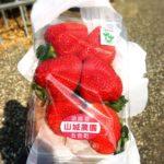 山城農園のいちご(1パック500円)