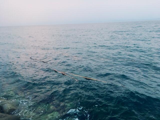 漂流物(ゴミ)の多い海