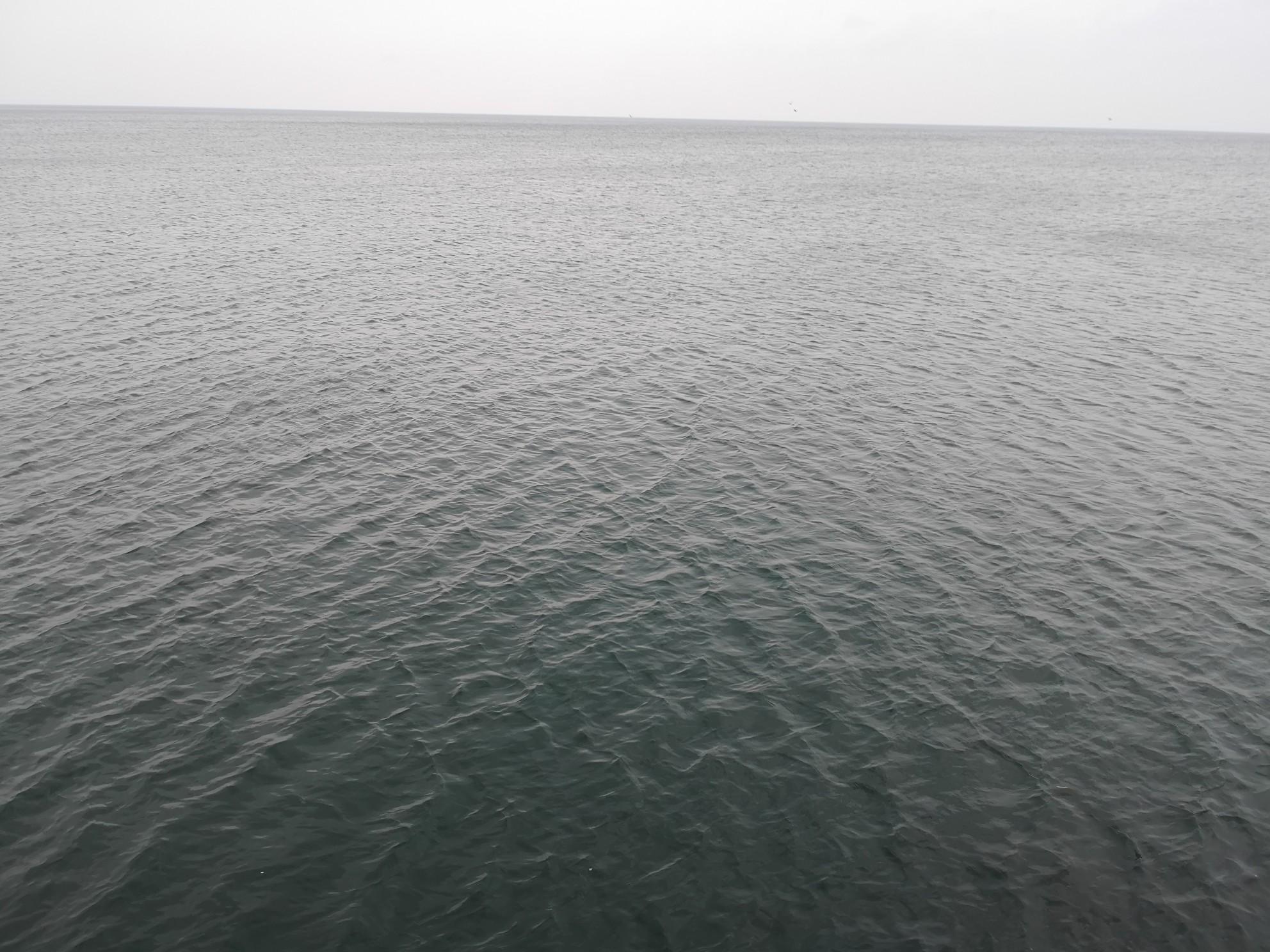 強風でタチウオが釣れた曇天の下の海面(2018.9)
