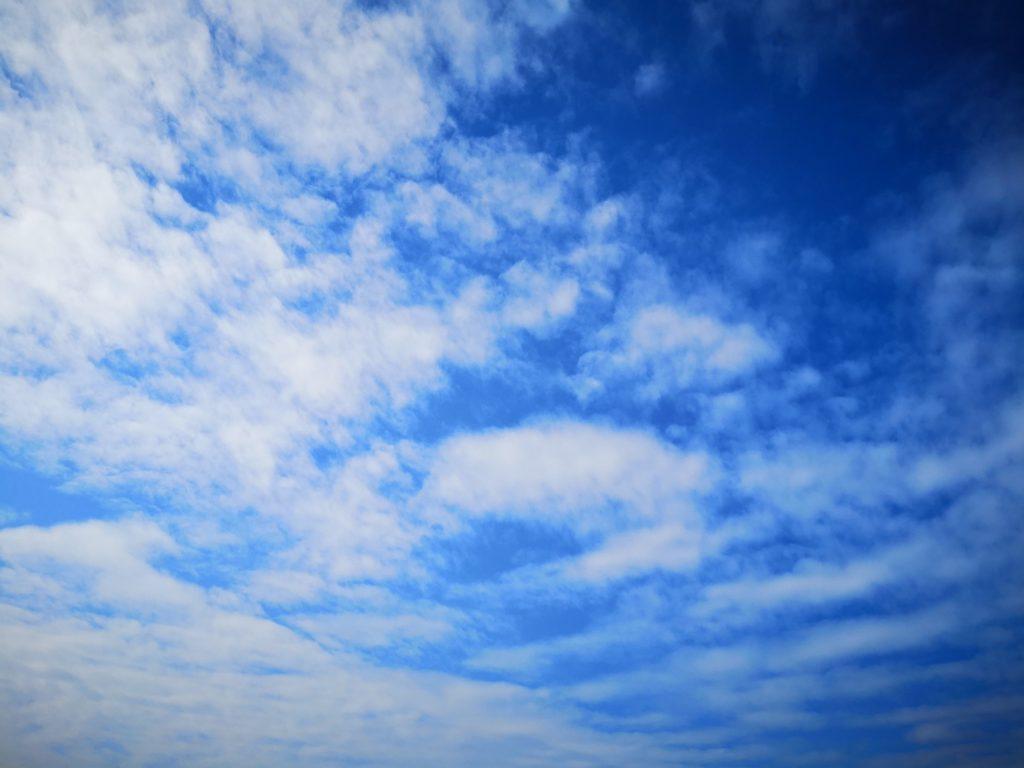 デイゲームでシーバス48cmをTKLM90SPマイワシで釣った時の青空と白い雲(2018.11)