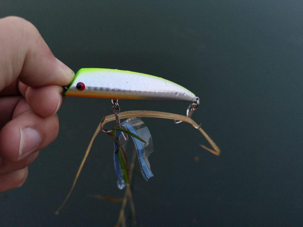 シーバス65cmと68cmを釣った時のゴミとtklm80(2018.12)