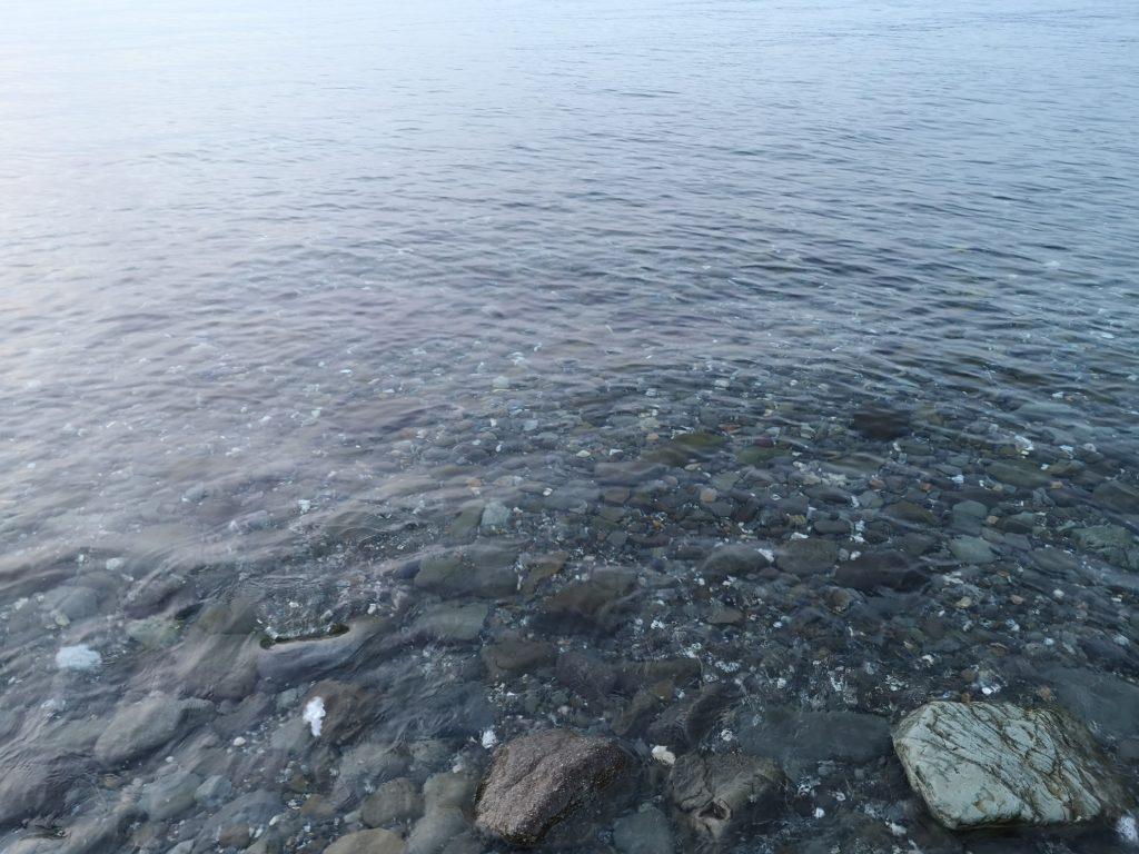 メバル3枚とガシラを釣ったシャロー(2019.3)