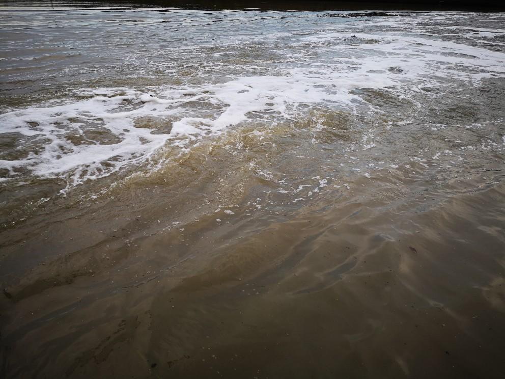 シーバス66cm釣った後の水門開放による濁流(2019.7)