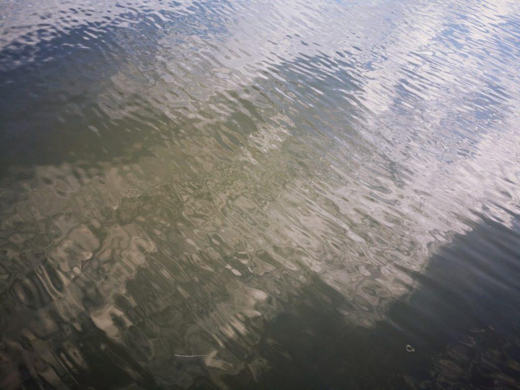 夕マヅメ1時間でメッキ12枚釣った日の水面(2019.9)