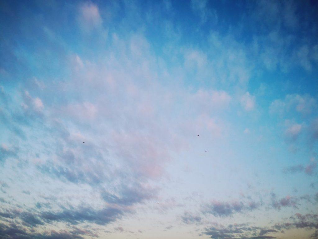 セイゴとキビレ15cmを釣った日の空(2019.9)