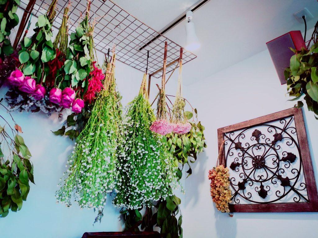 プランツカフェコハルビヨリの花