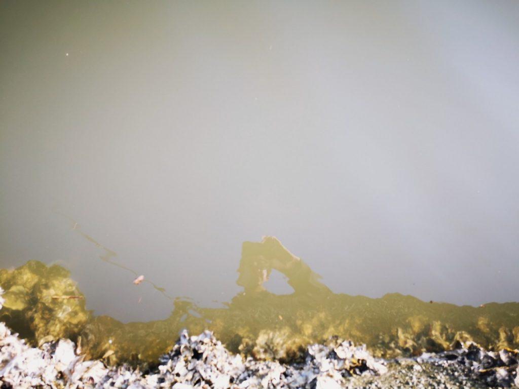 濁り潮の夕マヅメにメッキ15枚釣った日の水面(2019.10)