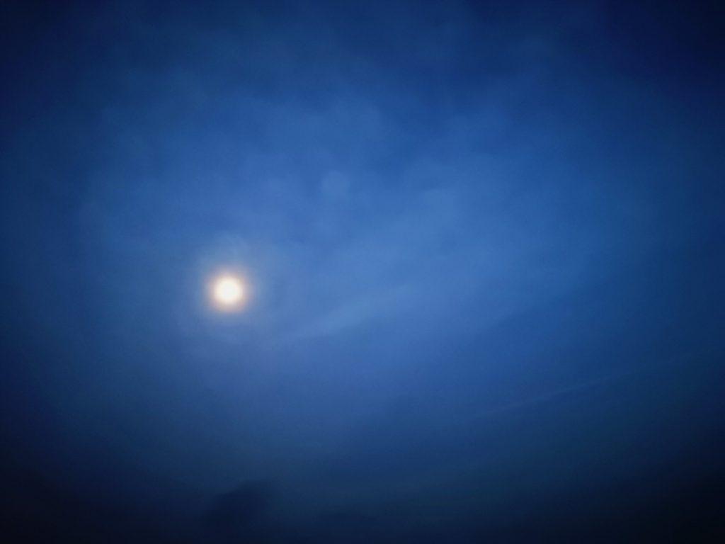 メバル2匹釣った月夜(2020.2)