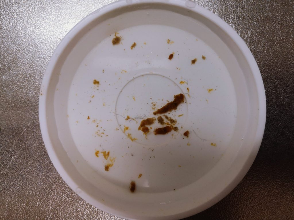 フロートリグのメバルつくしで釣ったメバル17cmが吐き出したベイト(2020.2)
