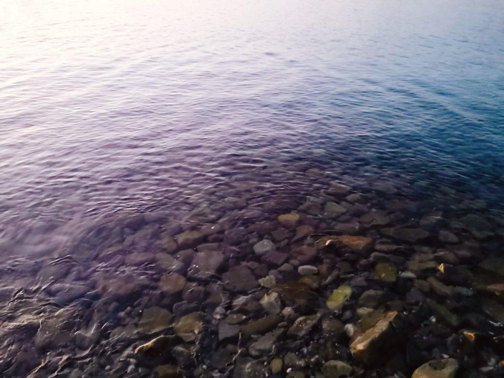 フロートリグのメバルつくしで釣ったメバル17cmをあげたゴロタ浜(2020.2)