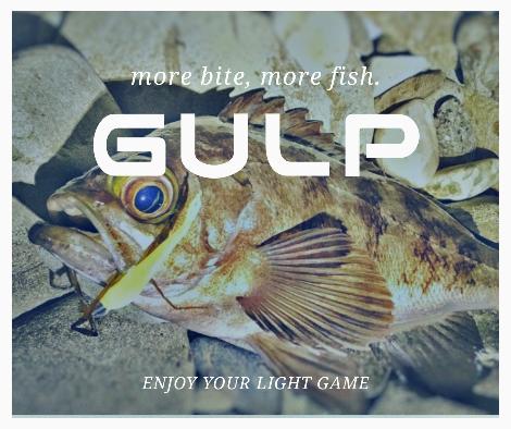 ガルプアイキャッチ