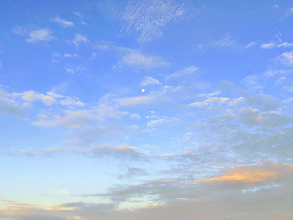 42cmのチヌを釣った日の朝(2020.9)