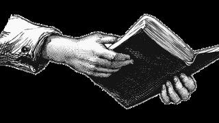 本を読書している手と腕