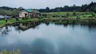つれない釣り堀釣り天国の3号池